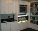 Saltwater aquarium installation in Belleair, FL