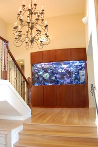Living Reef Bowfront Aquarium